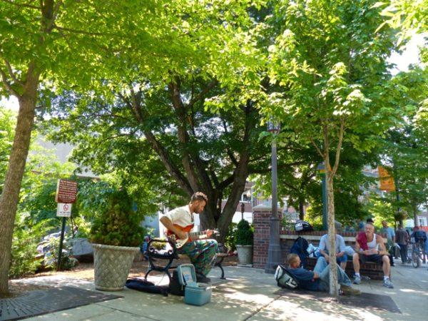 Downtown Asheville- park