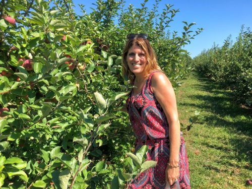 gettysburg-getaway-hollabaugh-bros-picking-apples-4