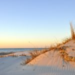 Virginia's Eastern Shore: The Ultimate Low-Key Beach Getaway